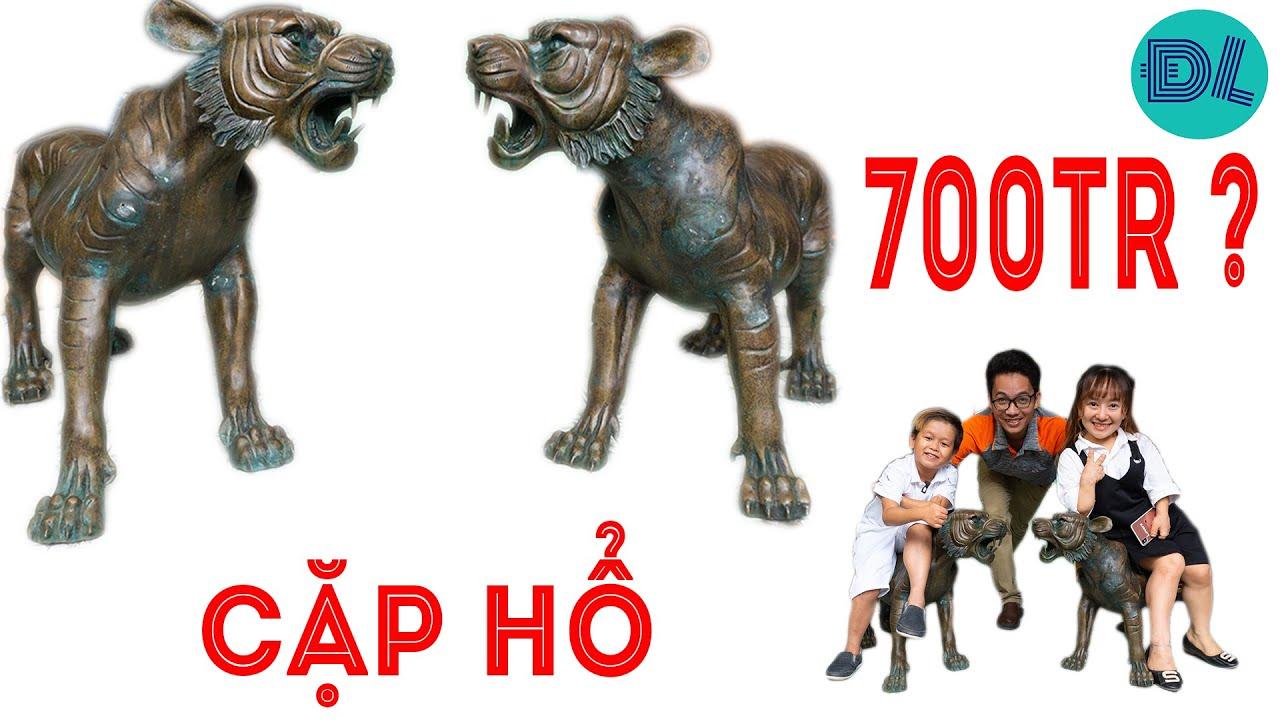 Huy Tí Hon, Út Mini đi xem cặp Hổ độc lạ hô bán 700 triệu đồng || ĐỘC LẠ VIỆT NAM