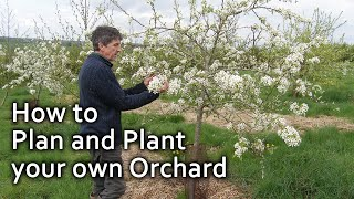 Gambar cover How to Plan and Plant your own Orchard