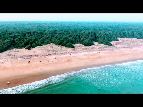 Balukhand Reserve Forest Beach, Odisha | Drone compilation