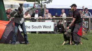 What You've Missed - Devon County Show