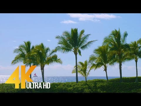 Best Beaches Of Oahu, Hawaii In 4K - Long Relax Video With Nature Sound (6-Hour)
