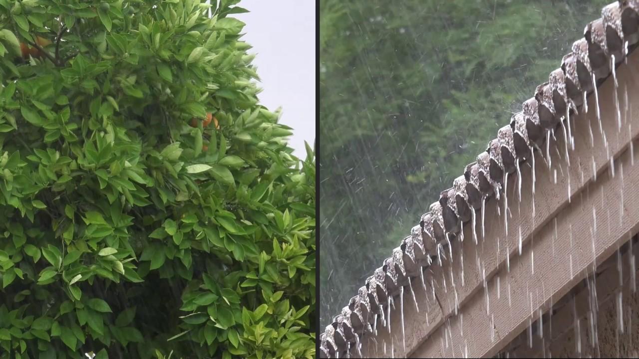 雨の音。 大雨の音、 雨音 【10時間】雨の音 睡眠、睡眠用BGM、勉強用BGM 、雨の音 BGM