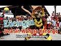 KUCINGAN JARANAN WONGSO KENONGO ( JWK ) NDADI SERE