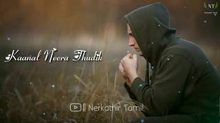 Manasa Yendi Norukkura 💕 Tamil Album Song Full Screen WhatsApp Status 💕Nerkathir  Tamil256kbps