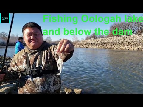 Fishing Oologah Lake Oklahoma