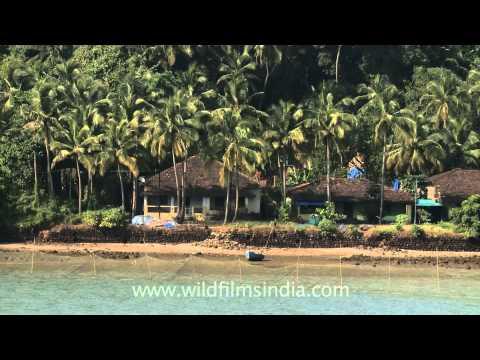 An amazing view of a beach near Saligao, Goa