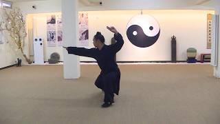 Chinese Kongfu by professional teacher--Yan Pujun