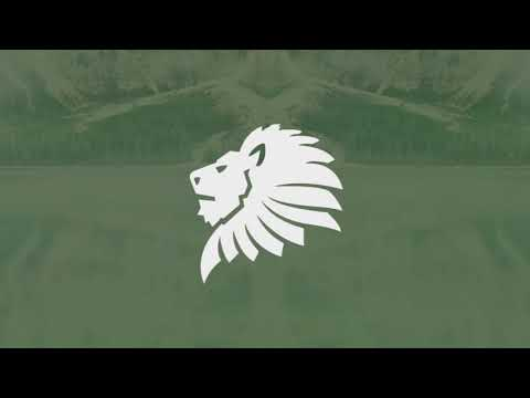 Arman Cekin - Surrender (ft. Josh Rubin) [Bass Boosted]