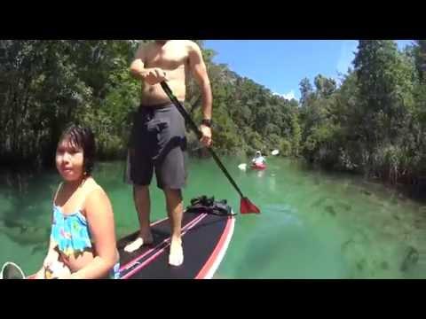 TOP 5 FLORIDA SPRING PADDLING TRIPS!