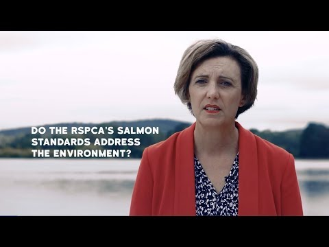 Do The RSPCA's Salmon Standards Address The Environment?
