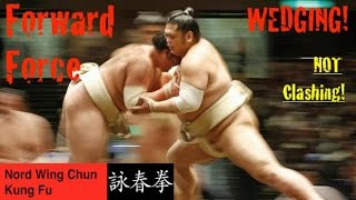 What Is Forward Force In Wing Chun - Pt.1 - Wedging