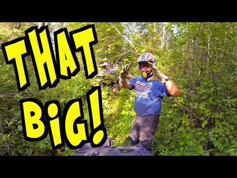 🌴 Welcome To The Jungle 🌴 - Evening ATV Ride With Mud Pro Man - Aug. 15, 2017