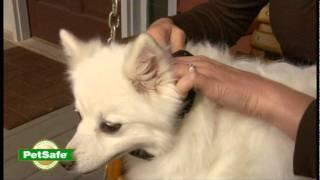 Petsafe Vibration Bark Control Overview
