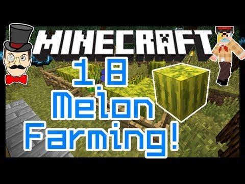 Minecraft 1.8 MELON FARMING! Melons & Pumpkin Seeds!