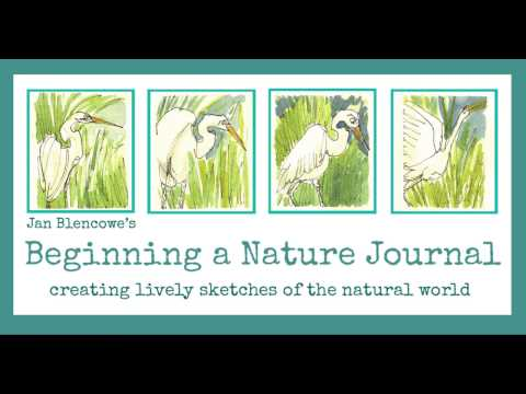Beginning a Nature Journal