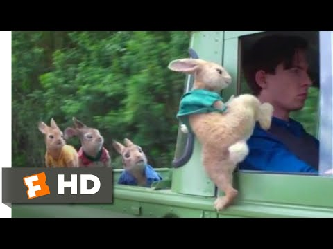 Peter Rabbit - Wet Willy Rescue Scene | Fandango Family