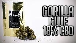 GORILLA GLUE 18% CBD | UK LEGAL CBD WEED | Herbalogy