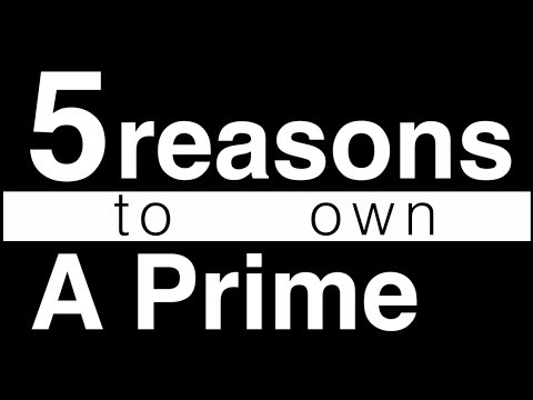 5 Reasons you should own a prime lens