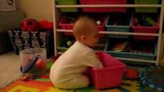 Isabelle's Toy Organizer