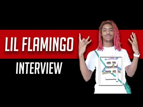6FT - The Lil Flamingo Interview