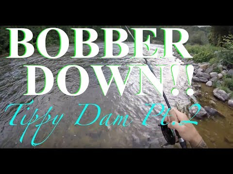 TIPPY DAM TROUT FISHING PART 2