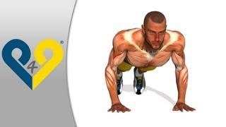 Como hacer flexiones, ejercicios FLEXIONES, flexiones pectorales - manos amplitud tórax
