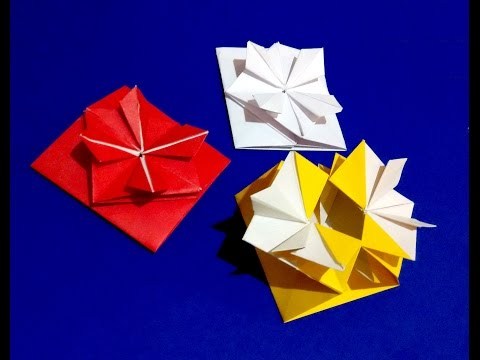 Pop-up Envelope with flower and secret message inside.  Origami Gift card