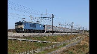 【配給輸送】 EF64-1031+武蔵野線205系 8両 岡部~本庄通過