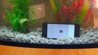 видео Apple - iPhone 6 ... восстановление после воды