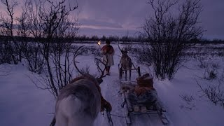 Sleigh - All Aboard! The Sleigh Ride: Preview - BBC Four