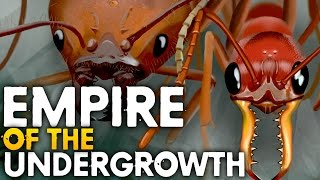RUNNING AN ANT COLONY | Empires Of The Undergrowth