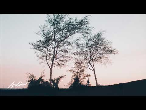 James Maloney - Angel Wings (Tontario Remix)