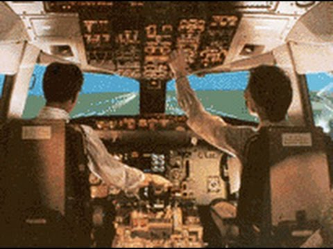 CLEARED TO LAND - Airliner Flight Deck video