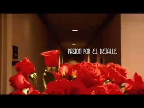 Hotel Deville Panama - Molecula Creative & Graphic Lab
