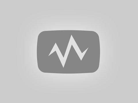 مسرح مصر مسرحية شغل قرود 13-11-2015