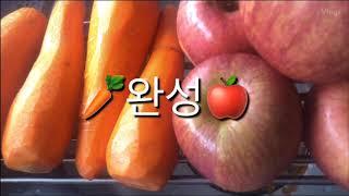 식도암 지네 아저씨 v-log(브이로그)4 - 사과당근…