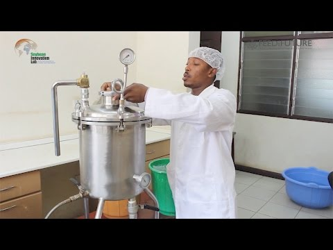 Soy Dairy Businesses in Ghana Improve Nutrition and Create Economic Development