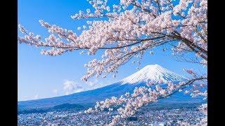 Chi phí du học Nhật Bản - ĐTTV Miễn phí 19006670