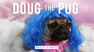 Doug the Pug Music Video Compilation