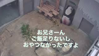 9/23   おかえり  リーリー thumbnail