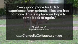 Clandulla Cottages Farm Stay - REVIEWS - Gold Coast, Qld Farm Stay Reviews