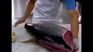 Как на ОКИНАВЕ разделывают рыбу