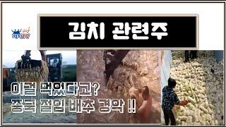 김치 관련주 대상, 풀무원, 파세코 (가치TV 황철중 …