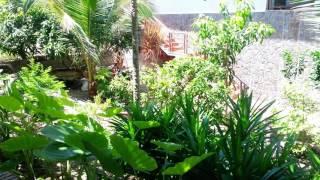 видео The beach resort 3 вьетнам | Отели и отдых. Отзывы.