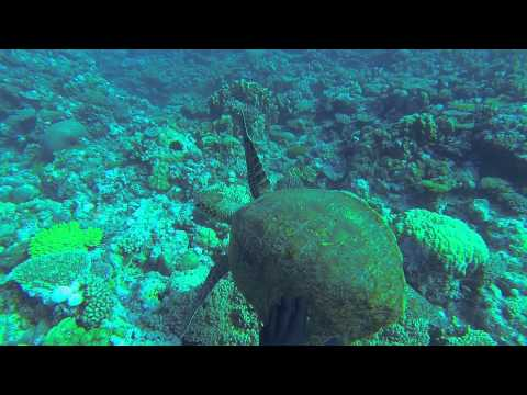 GoPro Kouaré New Caledonia 2014  By CHUNG Denis