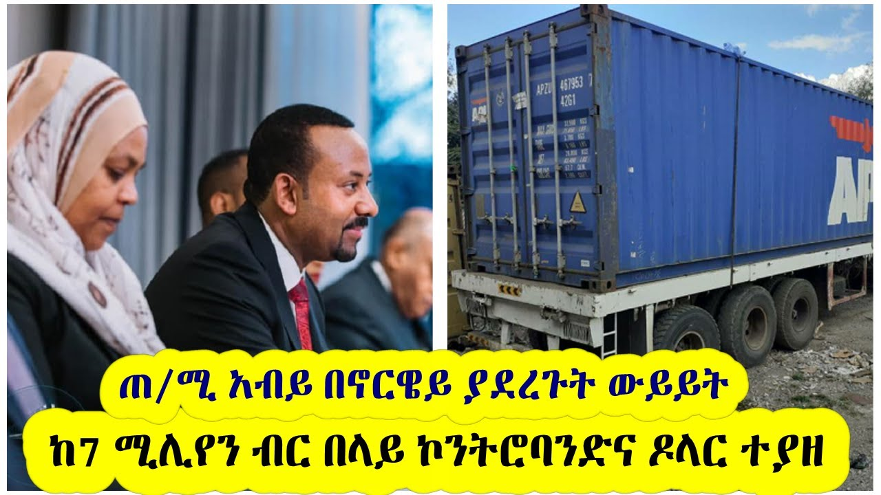 Dr. Abiy Meets with Norwegian Prime Minister