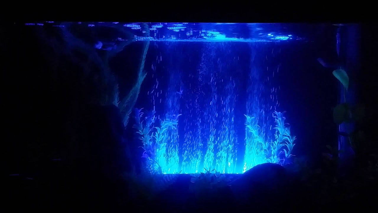 Fish Tank LED Bubble Curtain