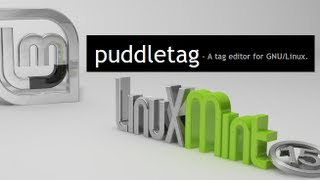 Puddletag : An audio tag editor for Linux Mint