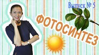 Уроки биологии: Фотосинтез (Вып. 5)
