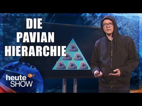 Gesellschaft funktioniert wie ein Pavianhügel (Nico Semsrott) | heute-show vom 12.05.2017